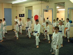 junior kata