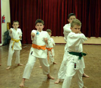 junior kihon training