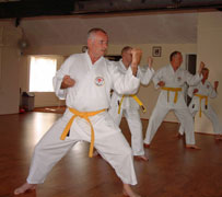 senior yellow belt group