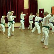 Junior Anshin Ryu Karate Class