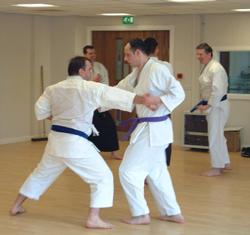 Senior Anshin Ryu Karate Class