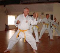 Senior Citizen's Karate Class