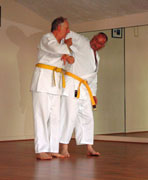 Karate for Over 50's
